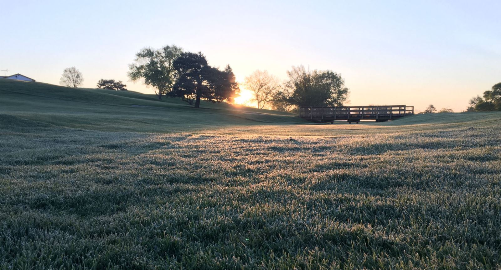 Frost on Golf Course